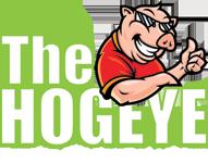 Hogeye logo