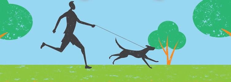 Dog Days of Summer 5K header